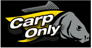 CarpOnly(カープオンリー)ブログ